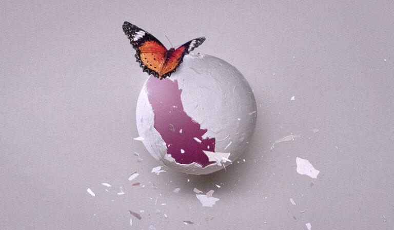Ein Schmetterling fliegt aus Leichtigkeit - Bist du auch schon ein Schmetterling?